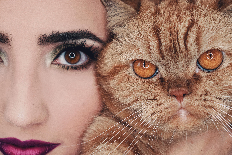 Nuevas compras de Maquillaje: Fenty, YSL, Benefit, Huda…